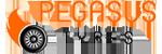 Logo marki Pegasus