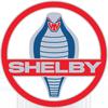 SHELBY AMERICAN logosu