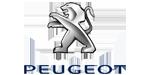Vendedor de neumáticos Peugeot