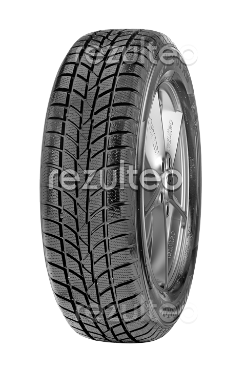 Photo Hankook Winter I*Cept RS W442 205/55 R16 91H
