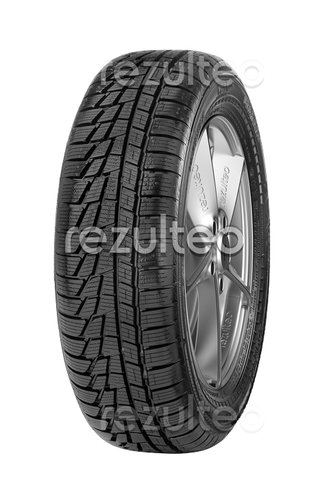 Photo Nokian WR C Van